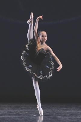 cisne negro 1